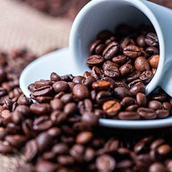 Características de los tipos de café